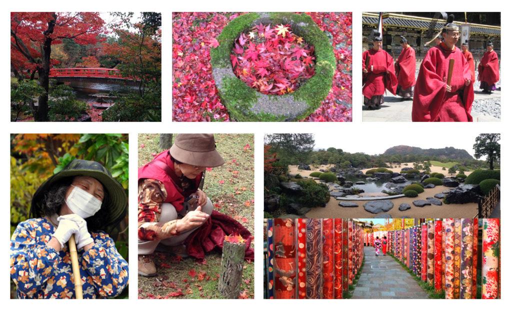 טיול מאורגן ליפן | יפן חוויה אחרת | Explore Japan| למטייל ביפן | סתיו ביפן