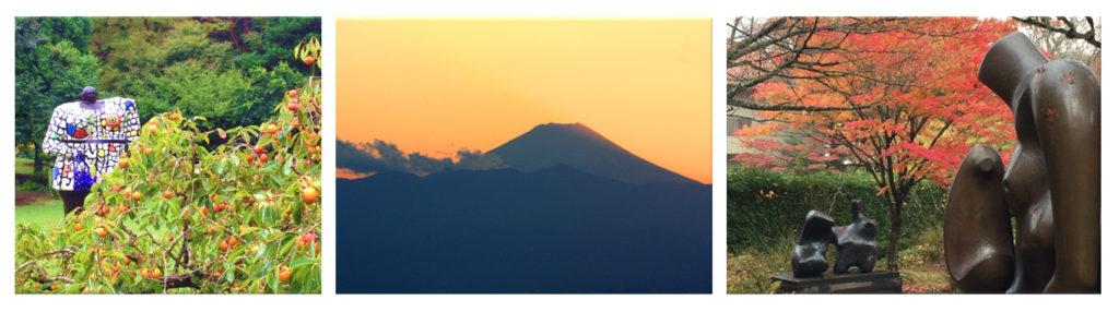מסע עומק ליפן לסתיו היפני עם 'יפן חוויה אחרת - Explore Japan