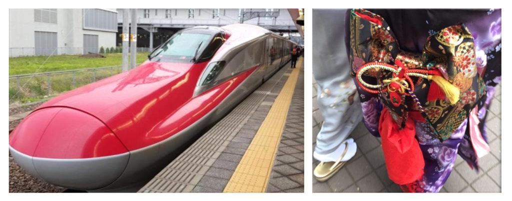 טיול מאורגן ליפן | רכבת שינקנסן וקימונו | קולאז' סתיו | יפן חוויה אחרת | Explore Japan