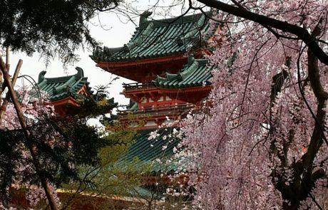 יפן – כרטיס ביקור